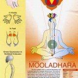 Mooladhara Chakra Chart