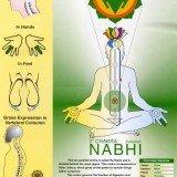Nabhi Chakra Chart